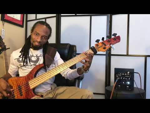 """I AGREE"" BASS COVER...J RAFIKI RAINES"
