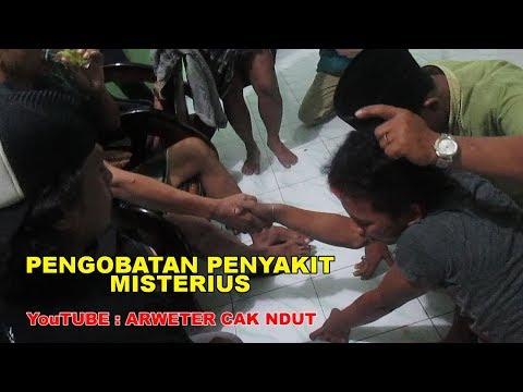 HEBOH! Penampakan Kucing Paling Aneh dan Misterius from YouTube · Duration:  2 minutes 12 seconds