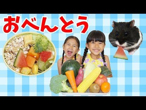 お野菜フルーツいっぱい♡ひまわりちゃんのお弁当を作ろう!himawari-CH