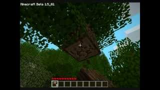Let's Play MineCraft [Multiplayer] #1