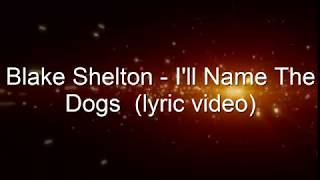 Blake Shelton I 39 ll Name The Dogs lyrics