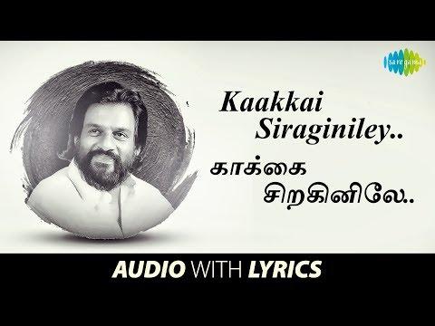 kakkai chiraginiley song lyrics