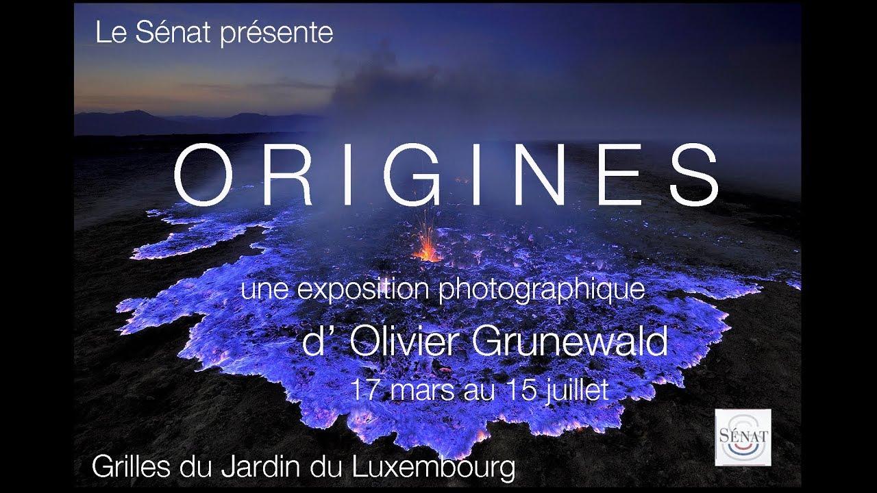 Exposition origines d 39 olivier grunewald sur les grilles du - Exposition jardin du luxembourg ...