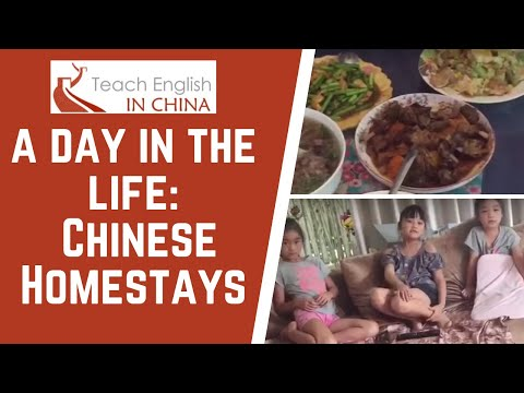 A Day in the Life of a Homestay Tutor in China