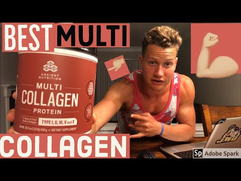 dr.-axe-multi-collagen-protein-powder-review