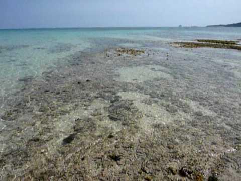 イーフビーチの沖。透明度の高い水。
