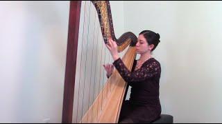 Fantaisie sur un theme de Haydn, op. 31 by Marcel Grandjany