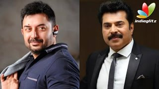Mammootty and Aravind Swamy to Share Screen again | Hot Malayalam Cinema News