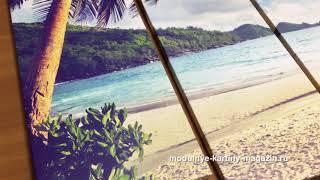 Модульная картина пальмы на фоне моря и пляжа