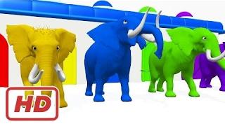 Цвета с животными для обучения детей | Цвета слон для детей | Образовательное видео цвета