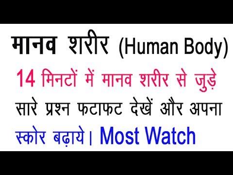 SCIENCE BIOLOGY GK - HUMAN BODY/ मानव शरीर से सम्बंधित प्रश्न - SSC CGL CHSL BANK  GROUP-D BSSC JSSC