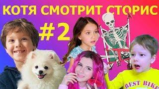 Песик Котя смотрит сторис инстаграм популярных каналов. Приколы от  Глеб топ шоу #2