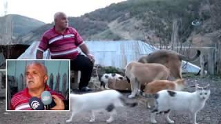 Emekli Maaşıyla 25 Kedi, 15 Köpek Besliyor