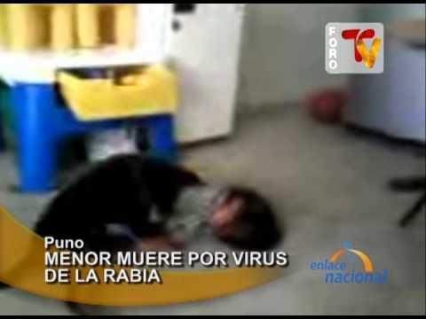 Niña muere por virus de rabia