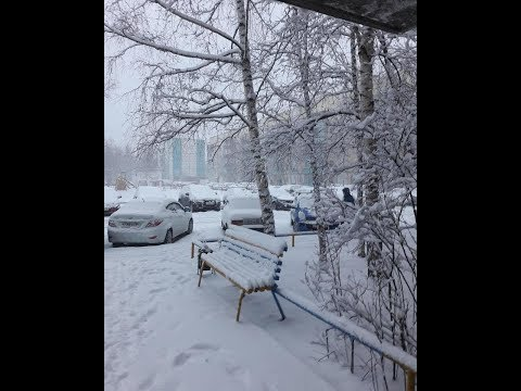 Майская зима в Сургуте