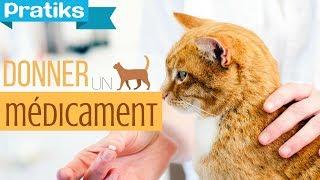 Conseils véto - Comment donner un médicament à son chat ?