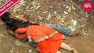 Chakor To Save Suraj In