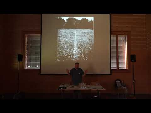 ALPS ART ACADEMY – Symposium / Bill Fox