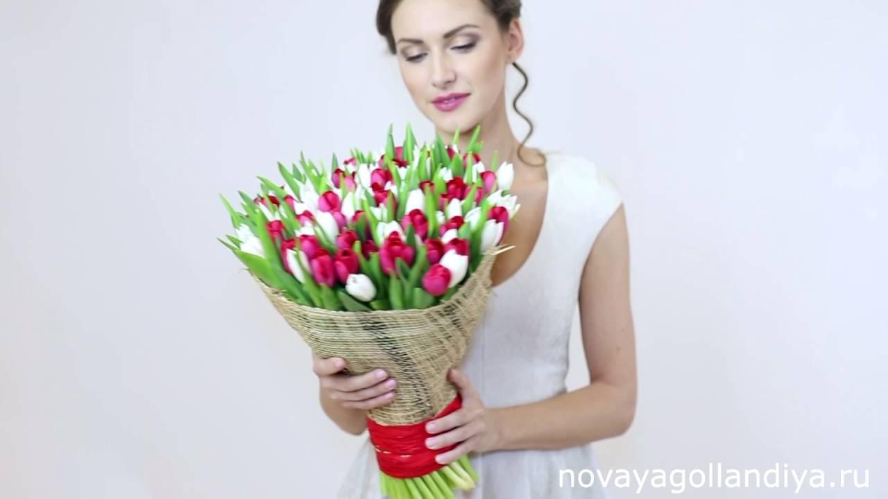 Купить рассаду цветов оптом, от 1 000 шт. В ассортименте. При заказе от 10 тыс. Шт. Цветов индивидуальные условия.