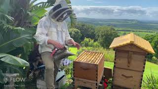 How to add y๐ur Flow Hive Super 🌻🐝
