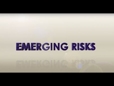 Emerging Risks Survey Findings