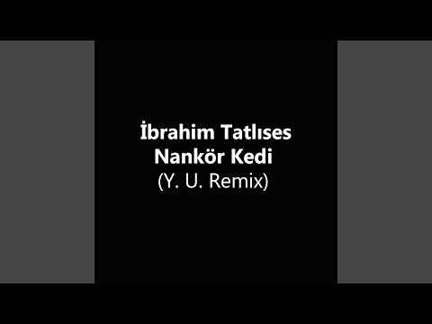 Nankör Kedi (Y. U. Remix)