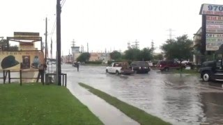 04 20 2016 harwin dr houston swimming in the flood