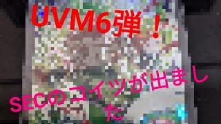 [ドラゴンボールヒーローズ]スターカリスマ中に出たシクレのあいつ UVM6弾 シークレット配列