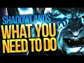 - PRIORITIES! All You Should Do In Shadowlands Week 1 & What You DON