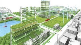 Urban Agriculture (Rooftop, Hydroponics, Aquaculture, and Aquaponics)