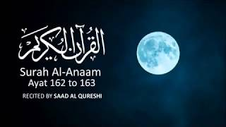 BEST Quran Recitation - Surah Al-Anaam 162 to163 ᴴᴰ