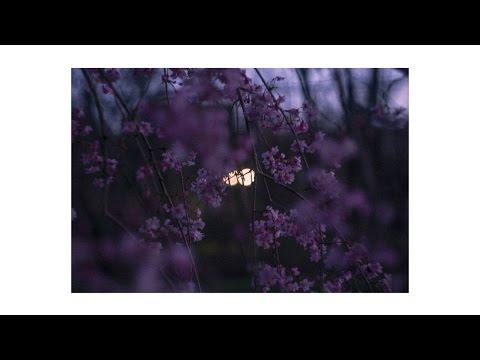 mathbonus - Sanctuary [Evergreen EP]