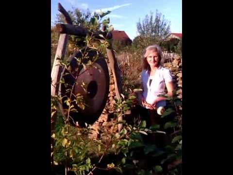 letzter gongschlag 2014 im hortus insectorum