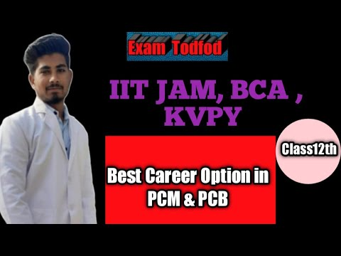 What is the best option after doing bca