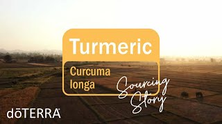 doTERRA Co-Impact Sourcing | Turmeric Essential Oil