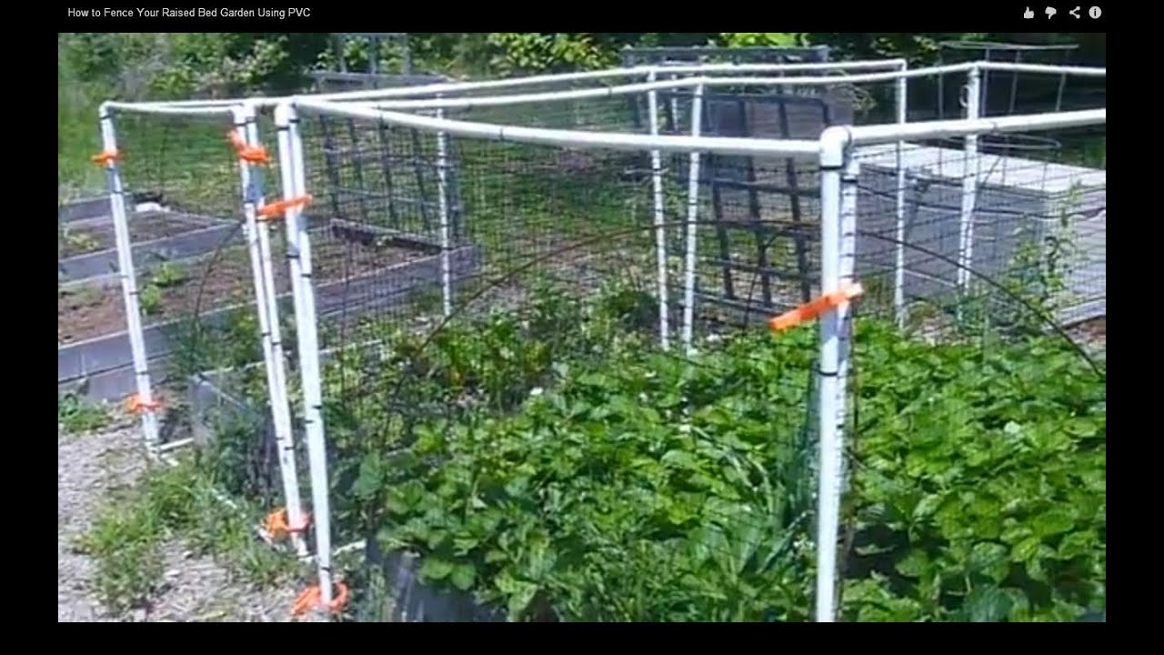 Small Raised Vegetable Garden Ideas
