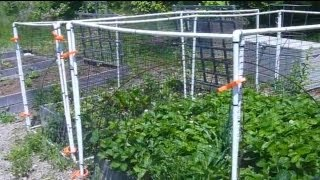 How To Fence Your Raised Bed Garden Using Pvc