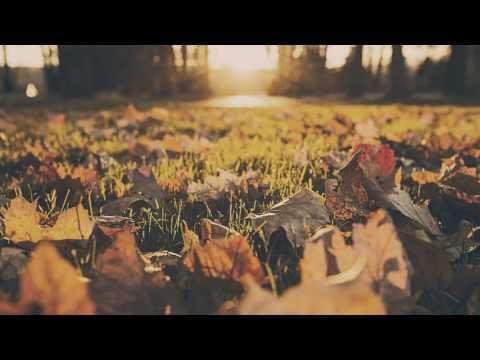 Andrew Kozar - Ha Na's Lullaby