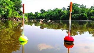 Эти БУЛЬДОЗЕРЫ НЕ ЛЕЗУТ в ПОДСАК Ловля толстолоба на поплавок