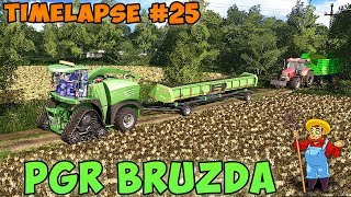 Farming simulator 17 | PGR Bruzda with seasons | Timelapse #25 | Mowing grass