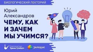 Биолекторий   Чему, как и зачем мы учимся? – Юрий Александров