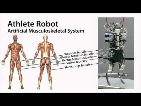 Athlete Robot: Sprint Running