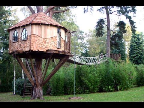 видео: Дом на дереве – это престижно!