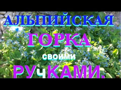 Сад участника Татьяна Герасимова [tanvan] :: Энциклопедия роз