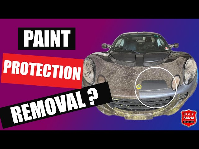 Paint Protection Film Removal