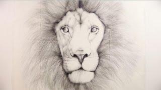 鉛筆画 ライオン>トンボ鉛筆の「MONO100」「MONO消しゴム」「MONOノッ...