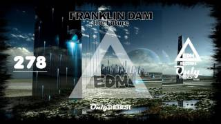 FRANKLIN DAM - THE FUTURE #278 EDM electronic dance music records 2016