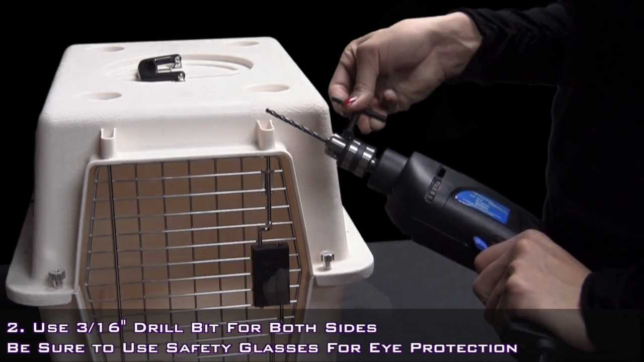 Pets On Airplanes How To Modify Your Pet Carrier For Airline