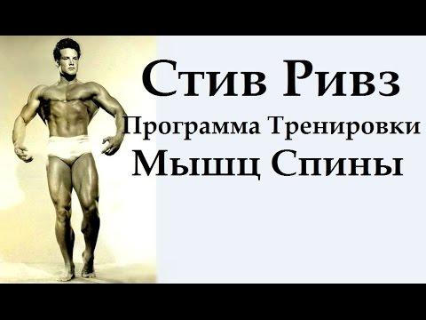 тренировки мышц спины.