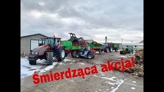 #187- Załadunek i transport obornika!(2x Valtra  n101/t140 + merlo 25.6)